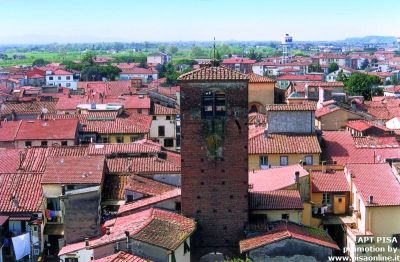 normal_Castelfranco01